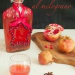 Gin speziato al melograno